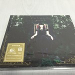 堀江由衣ニューシングル「アシンメトリー」をフラゲしてきた。