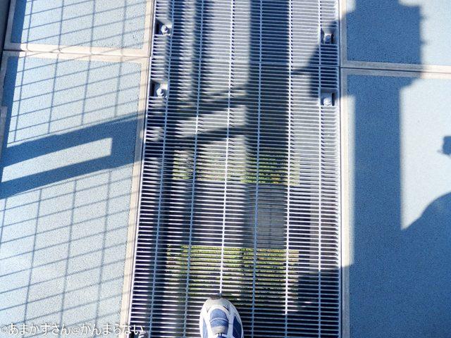 三島スカイウォークの吊橋から見える下