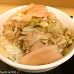 岩下の新生姜とJR駅そばコラボ「ミニ豚丼セット 岩下の新生姜」を食べた!さっぱり食べやすくてクセになる!