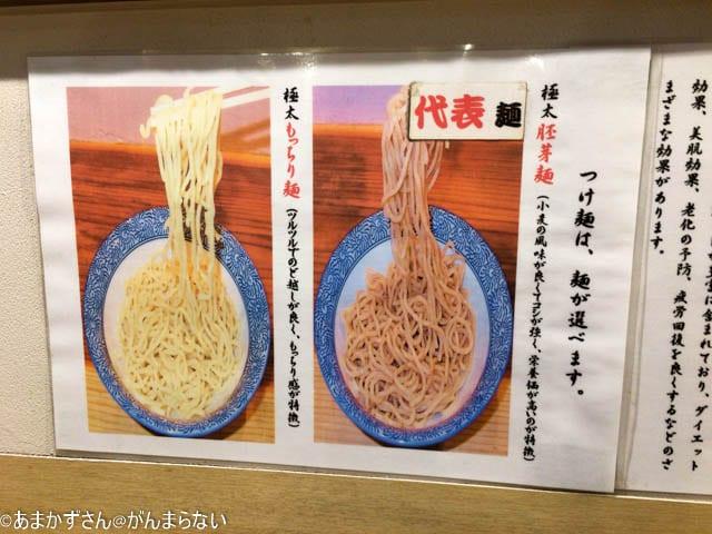 「道玄坂 マンモス 」の麺の解説